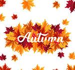 秋季树叶艺术字