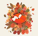 落叶堆上睡着的狐狸