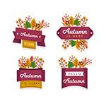 秋季树叶标签