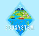 彩色生态系统插画