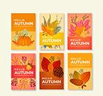 彩色秋季元素卡片