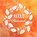 你好秋季白色树叶