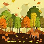 秋天公园里的动物