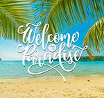 大海椰树海报