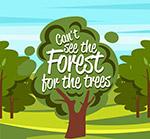 绿色森林树木