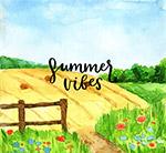 夏季田地风景