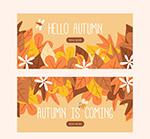 秋季树叶banner