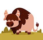 草地上的野生牛