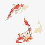 中国风水彩鲤鱼