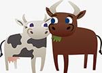 奶牛公牛矢量