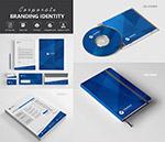 蓝色抽象图案品牌视觉