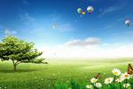 自然和谐春天海报