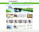 生态企业网页