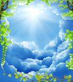 蓝天白云绿叶背景