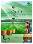 环保茶叶宣传海报