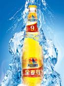 天目湖啤酒x展架