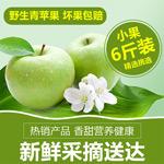 淘宝青苹果主图