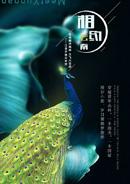 相约云南旅游海报