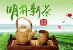 淘宝春季茶叶