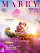 梦幻婚纱摄影海报
