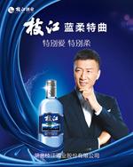枝江酒业海报