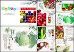 瓜果蔬菜画册