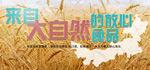 自然馈赠燕麦bann
