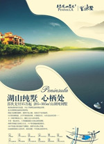 湖山纯墅地产海报