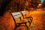 秋天公园图片
