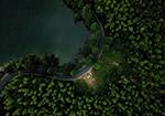 夜晚森林公路