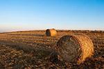 农场干草垛