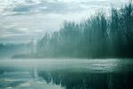 雾蒙蒙河景