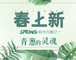 淘宝春季海报