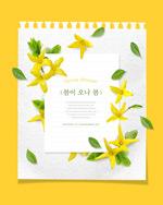 黄色春季花朵海报