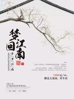梦回江南地产海报
