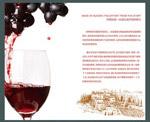 干红葡萄酒画册