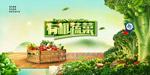 有机蔬菜宣传海报
