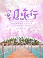蜜月旅行海报