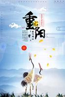 清新重阳节海报