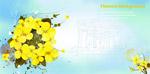 黄色封面花朵