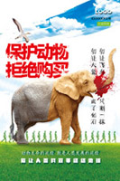保护动物拒绝购买