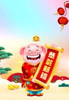 恭贺新春猪年背景