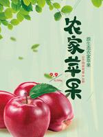 清新农家苹果海报