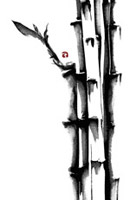 中国画竹子