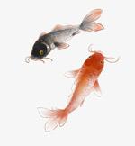 金鱼水墨国画