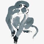 中国风水墨画猴子
