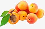 秋季水果桃子