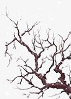 手绘雪天的树枝