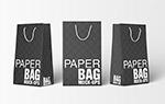 环保纸袋样机