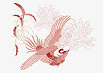 水红凤凰插画